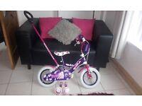 Kids Bike with Parental Handle