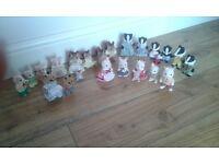 Sylvanian Family collection