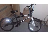 BMX Bicycle (good condition)