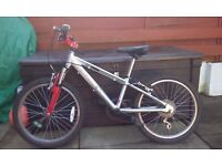 Revolution 20 inch mountain bike