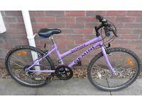 Girls Gemini Outrider Mountain Bike Bicycle