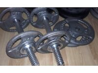 Weiber 235 Bench and Weights