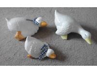 Cupboard top ducks