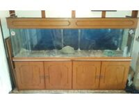 Used fish tank with cabinet, working lights, elements, filaments.