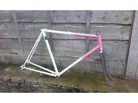 HACK Reynolds 531c decal road bike frame - fixed gear fixie commuter winter ideal steel Dawes? 531?
