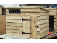 duck / geese housing