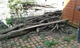 Logs For Sale Ideal For Use On Log Burners And Open Fires £20