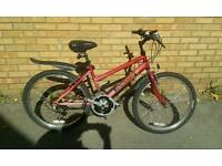 Raleigh Ladies/Girls Mountain Bike in very nice condition, open to offers.
