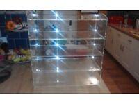 Acrylic food display unit