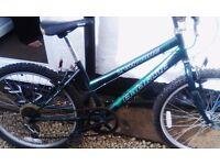 Girl's mountain bike for sale