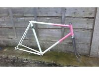 HACK Reynolds 531c road bike frame - fixed gear fixie commuter winter ideal - steel Dawes ? 531