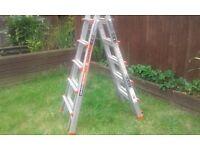 Revolution giant little ladder 5 rung xe Aluminium multi purpose