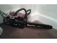 petrol homelite chainsaw