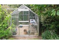 Green house 6ft by 8ft with planting station.