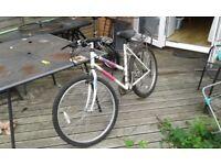 Scott womens bike