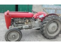 Massey Ferguson 35 tractor for sale
