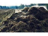 Free Cattle and Pig Manure