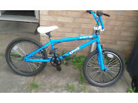 New X Rated Spine BMX Bike 2015 - 20""