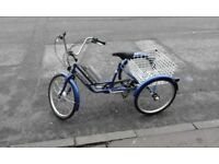 Electric trike for sale