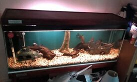 4 FOOT AQUARIUM/FISH TANK