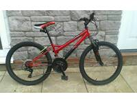 Falcon Mountain Bike
