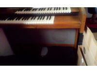 RARE 'Riha Safira' vintage organ.
