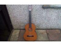 Bm espana spanish guitar