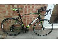 Barracuda corvus 2 road bike