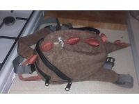 little life donosaur reins /backpack