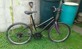 Mountain bicycles small adult or teenager