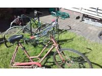 job lot retro collectible rare vintage bikes S&R to clear pashley reckord hurcules