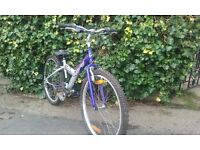 Giant mountain bike 24 inch wheel