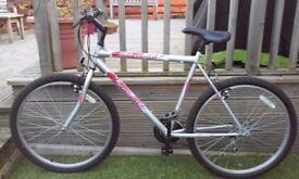mens 18 speed Mountain Bike