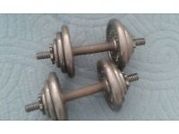 2 one arm dumbbells