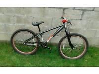 X rated bike