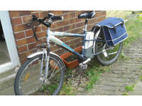 Salisbury electric bike with puncture