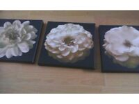 set of 3 canvas pics from next black and white 10.00