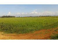 WANTED - 1 ACRE OF AGRICULTURAL LAND