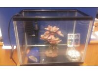 12 x 9 x 7 INCH AQUARIUM WITH REMOTE LIGHT/FISH TANK