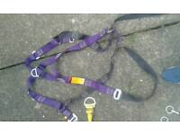 Ridgegear safety harness x 2