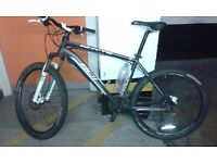 Whyte 801 Mountain Bike size: Large (19'' frame size)
