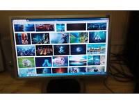"LG 19"" Silver widescreen pc monitor"