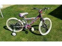Girls bike no gears, great condition
