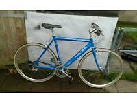 Hybrid mountain bike fausto coppi