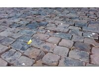 Cobble stones paving