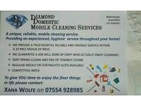 Domestic cleaner available for work