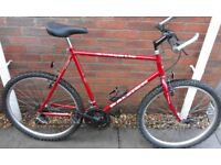 "Gents Raleigh Cyclone Large 23"" CroMo Frame Mountain Bike Bicycle"