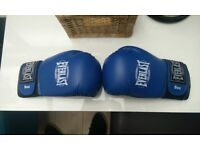 Everlast 8oz boxing gloves - rarely ever used