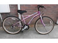 Ladies / Girls Apollo Siren Mountain Bike Bicycle