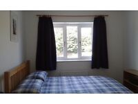 MONDAY - FRIDAY Double Room for Single Occupancy with lovely garden view